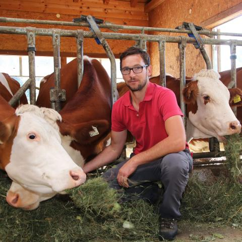 christoph gwehenberger with cows